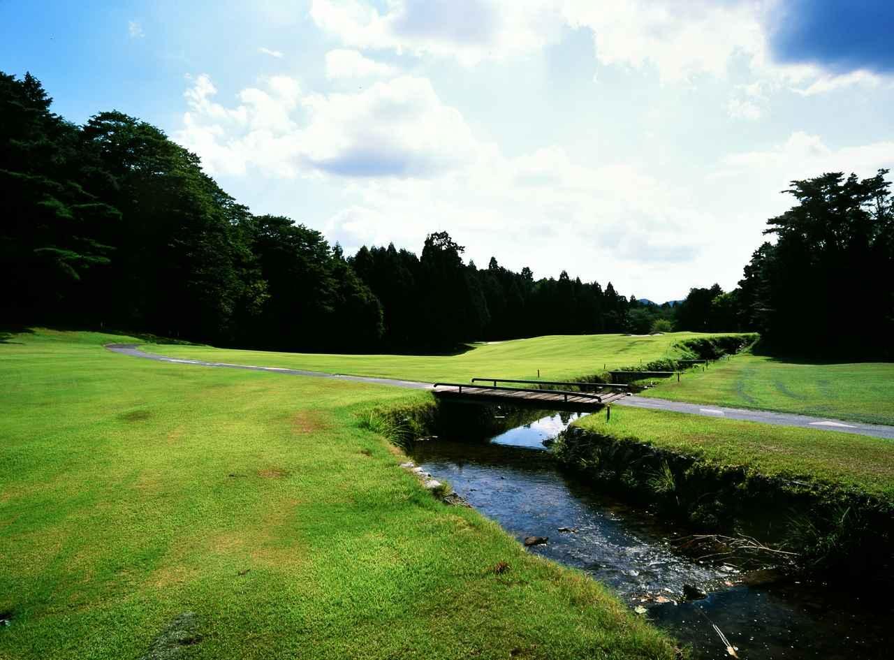 画像: 京都ゴルフ倶楽部・上賀茂コース 6H