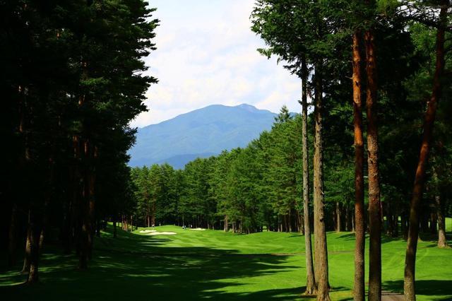 画像: 西コース8番パー4。正面に見える山は日本二百名山の三ツ峠