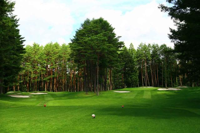 画像: 西コース4番パー3。2グリーンだが完全に林でセパレートされているためパー3が2ホールある感じ