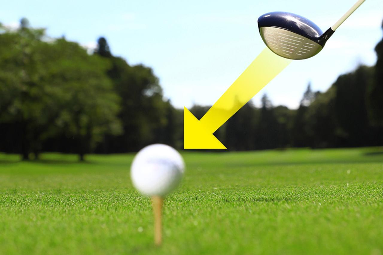 画像: フェースがボールとにらめっこ