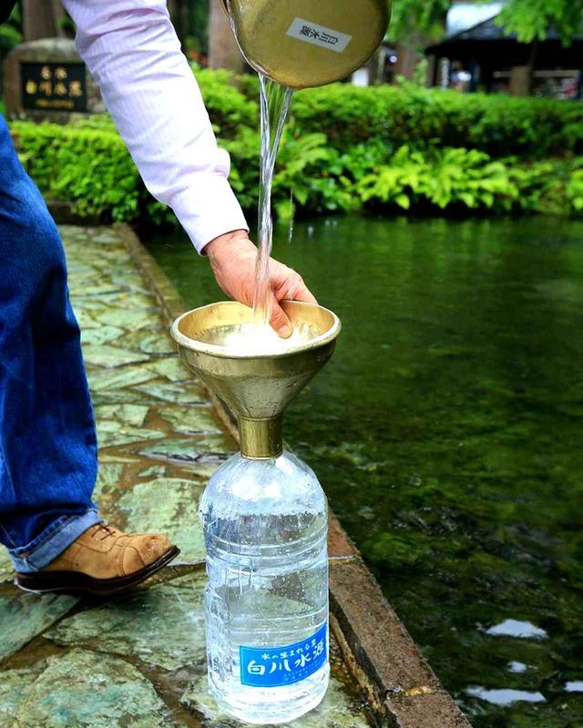 画像: 市内にも多くの湧水の水源がある