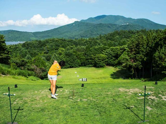 画像: 芝から直接打てる250Yのレンジは、ラウンドしなくても利用可