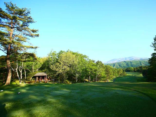 画像2: 【草津・菅平】日本三名泉でゴルフ、はしご湯、焼鳥ハフハフ…。もっと涼しく! もっと楽しく! 大人の信州