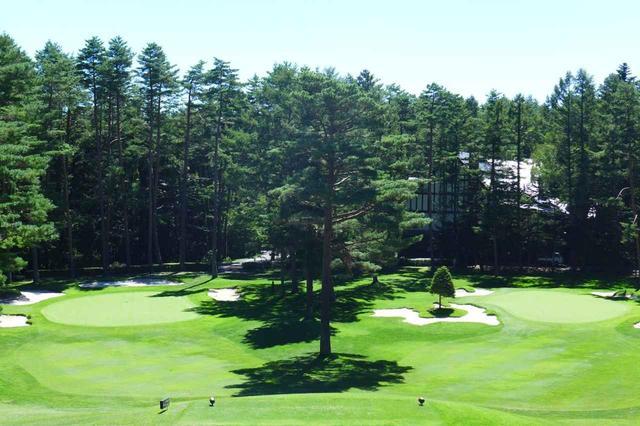 画像: 西の9番ホール、パー3、右がAグリーン、左がBグリーン。木でセパレートされ独立した1グリーンホールに見える