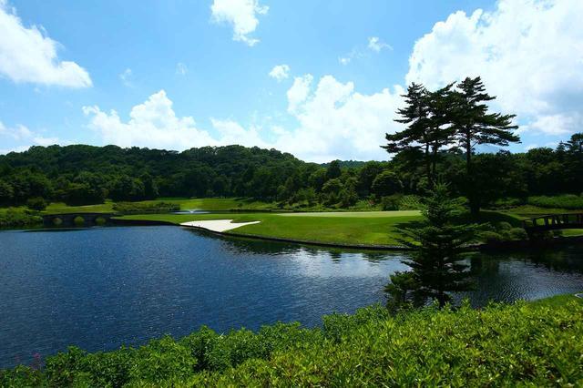 画像: 18番 191Y P3。池が美しいアイランドグリーンが最後に待っている
