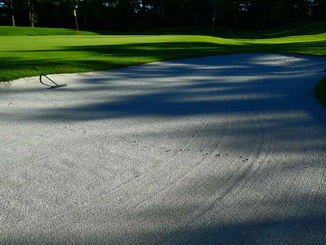 画像: 白砂とグリーンのコントラストが美しい