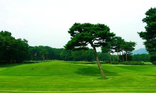 画像: 井上誠一の弟子、大久保昌が設計。松林に囲まれた林間18ホール。東武藤が丘CC