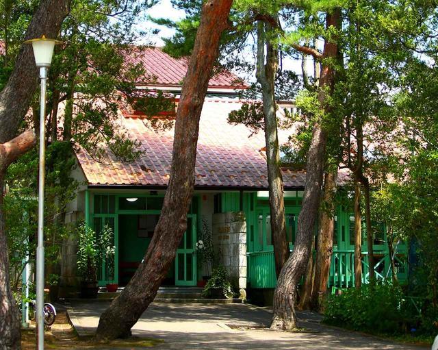 画像: クラブハウスの入口。立派な赤松に囲まれた佇まい