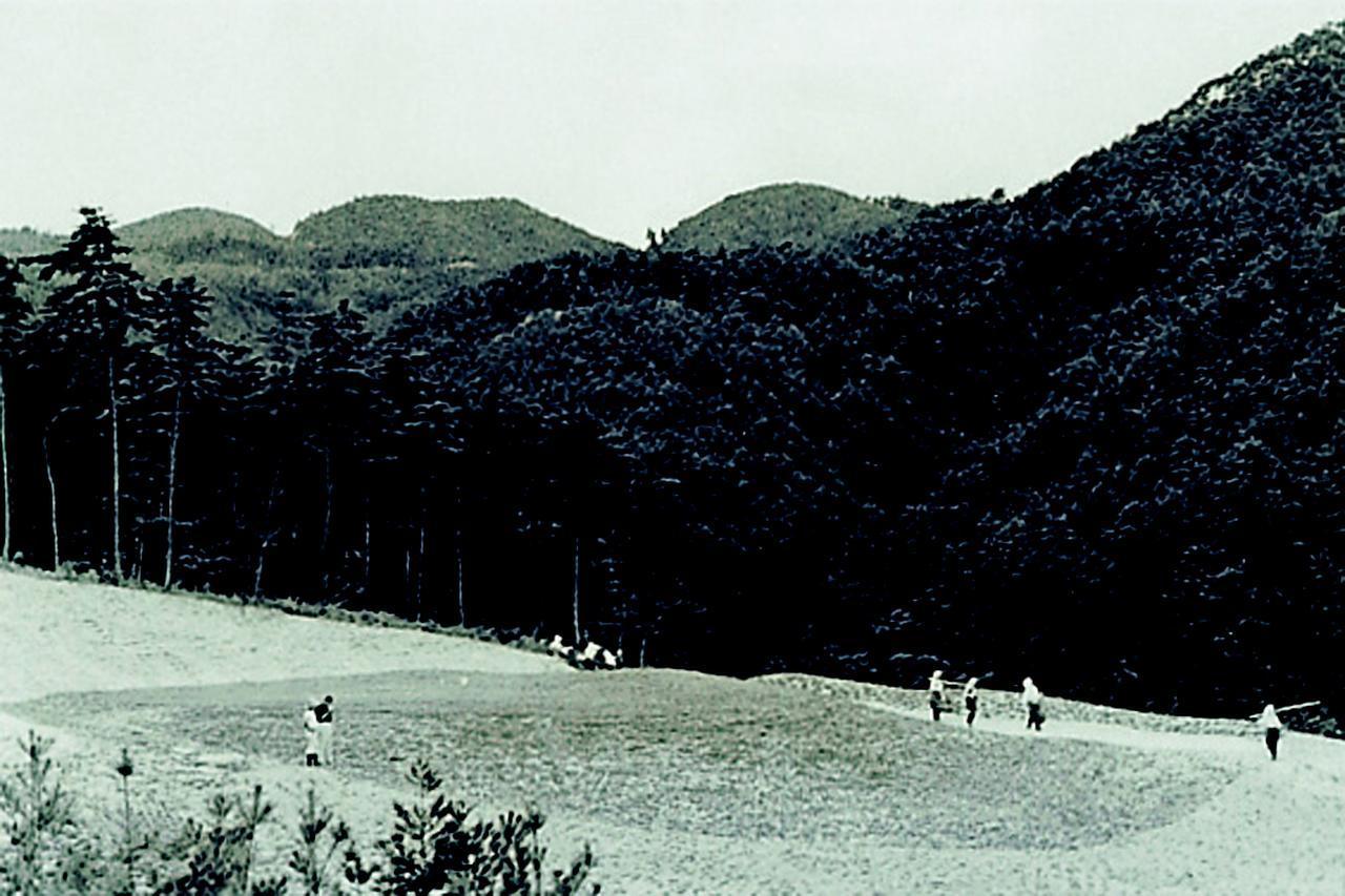 画像: 芝が足りず、市松模様に張った