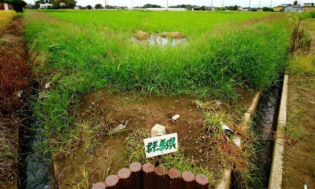 画像13: 【ゴルフ場クイズ】珍しい平地にある埼玉、栃木、群馬の「3県境」。ここのすぐ近くにあるゴルフ場にまつわる2問!