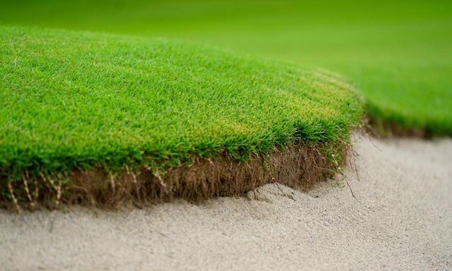 画像: バンカーと芝生の境界線を綺麗に揃える「エッジ切り」というメンテナンスを通年行っている