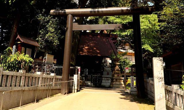 画像: 高円寺の氷川神社境内にあります