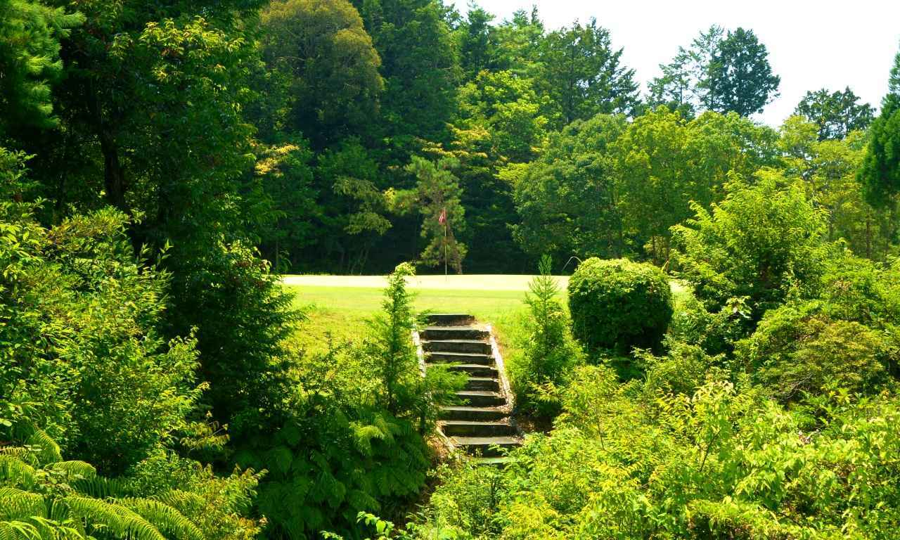 画像: 4番 70ヤード パー3 谷越えのホール、森の中にグリーンが浮かぶ