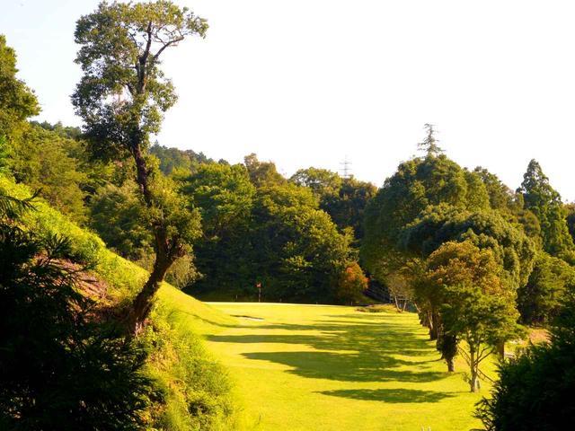 画像: 15番ティから。左の大きな木が空中ハザード、右は狭い