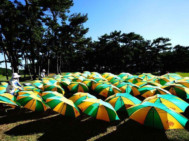 画像: クラブハウスの前に並べられた傘。雨後に見られる大洗名物