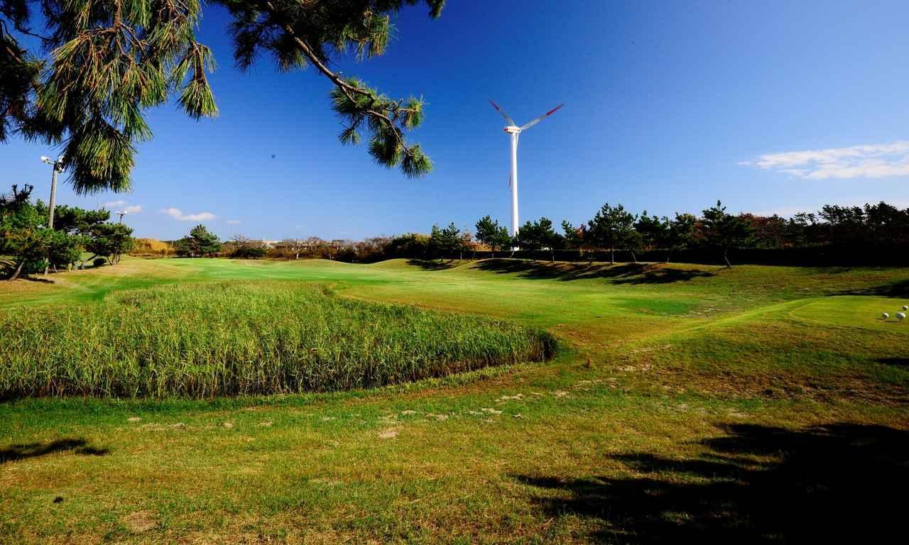 画像: 3番 123Y P3 ホール右には風車、左の池には草が生えて湿地帯の様相。まるでリンクス