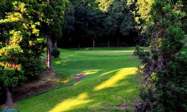 画像: 9番 210Y P3 左サイドはOB。手前は谷。最後に、ダイナミックゴルフの名物ホールが登場