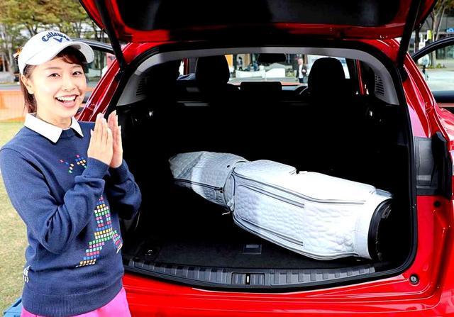 画像: 【OUULキャディバッグ スペック】 アリゲーター5ウェイカートバッグ。8.5インチ(47インチ対応フード付き)。約3.6kg(本体素材ポリウレタン)