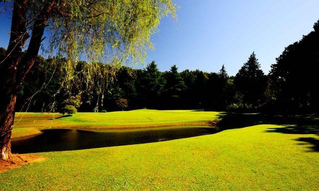 画像: 隅々まで管理が行き届いて、芝生のコンディションは年中よさそう!