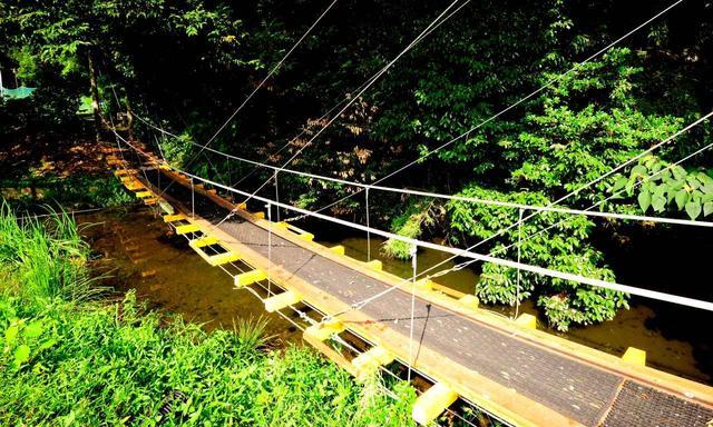 画像: 4番と5番の間にはつり橋登場