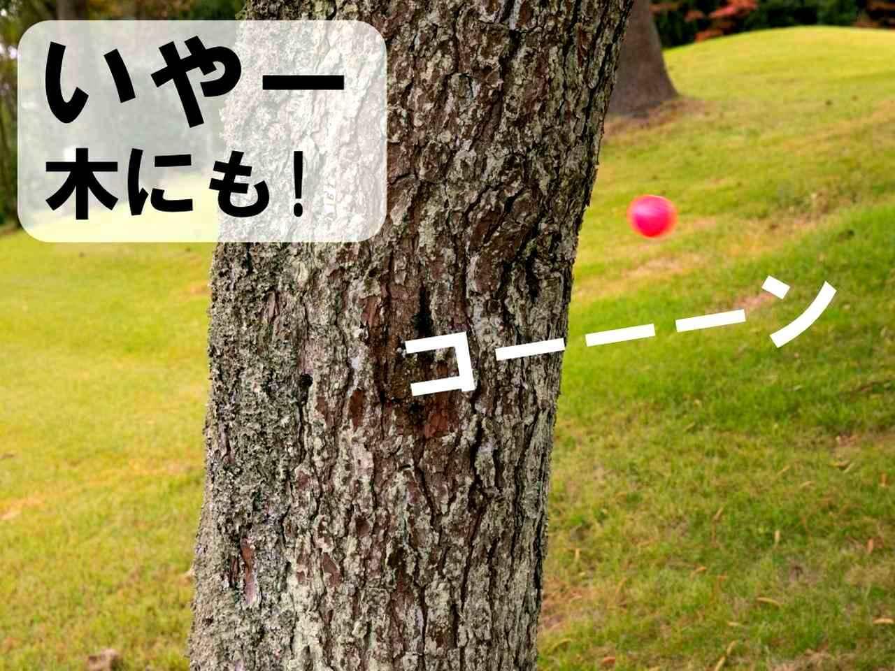 画像3: 【ルール】2度打ちした球が体にも当たった! これって何打罰になる?