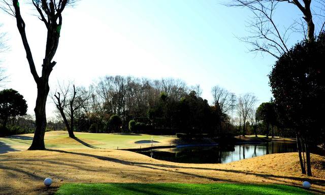 画像: 2番(11番)135Y(161/170Y)右は池、左は木々がせり出す難ホールだ