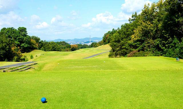 画像: 18番ホール/456㍎/パー4(西コース)ウッドフレンズ森林公園ゴルフ場の中で最も難しいとされるパー4。ティショットは右寄りの鉄塔狙い
