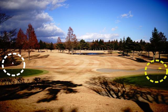 画像: 25那須ゴルフガーデンは黄色のピンと白いピンの2グリーン