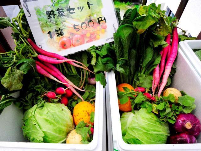 画像: 土日には三浦野菜の直売が行われます。これを楽しみに来場するゴルファーも多いのだとか