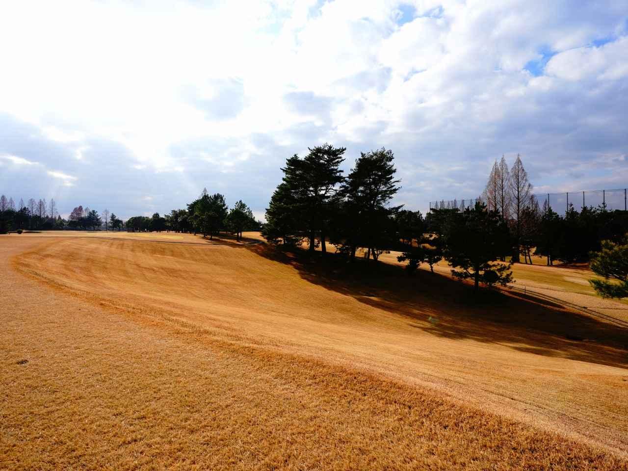 Images : 4番目の画像 - 三田ゴルフクラブ - ゴルフへ行こうWEB by ゴルフダイジェスト