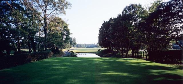 画像: 芹澤信雄が育った富士平原ゴルフクラブ。池の右側の杉の木がその木(箱根コース・1番ホール)