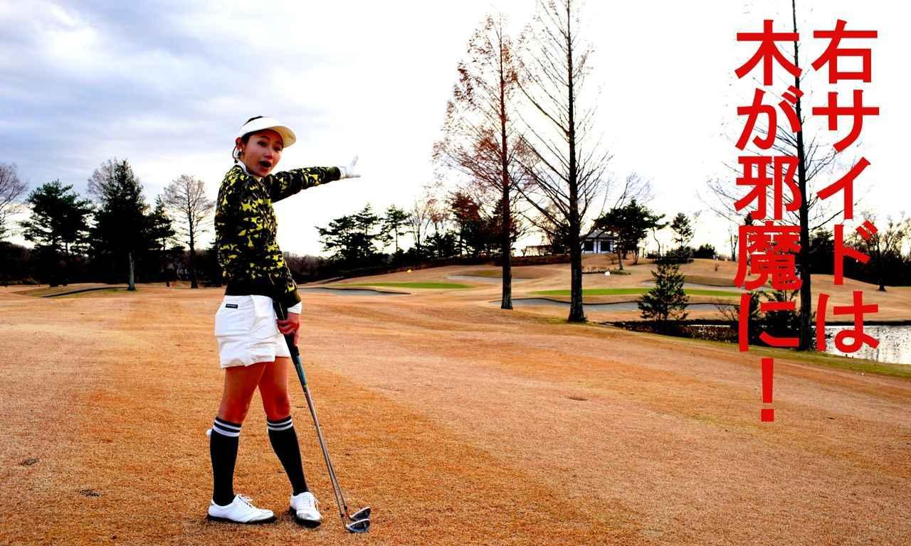 画像1: 【栃木・25那須ゴルフガーデン】飛ばすよりも止めるがゴルフ!「1~3番」ウェルネスの森 那須。GOLULUチェック⑧