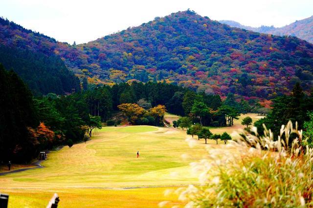 画像: 標高750m。紅葉の美しさも見どころのひとつ