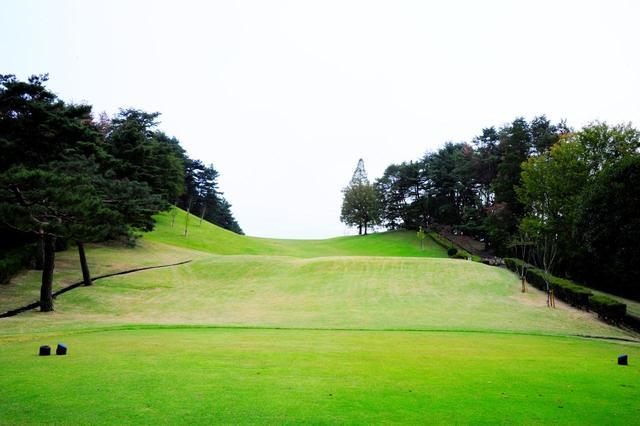 画像: 東京よみうりCC 14番(364Y・P4)丘陵を活かしたエンターテイメント性が光る。壁に向かって打つティショットが成功した後は楽、という「先憂後楽」のアイデア