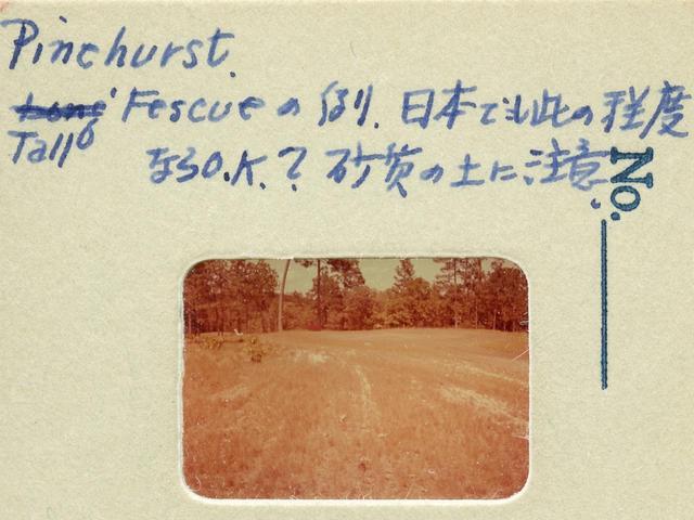 画像: パインハースト ゴルフリゾートの草地。「こういうラフが日本にもあれば、日本人のゴルフ技術も国際的になる」と参考にしたという
