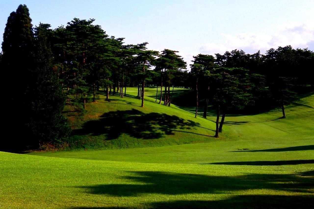 画像: 10番パー4。飛距離に応じて「どの松の上を狙うか」、井上流のエンターテイメント。グリーンは2つとも砲台の曲者