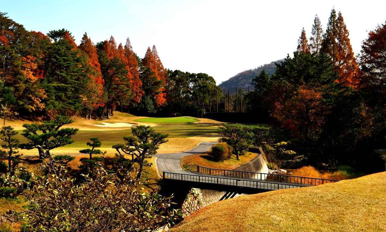 画像: 16番(454Y・P4)仁川渓谷が斜めに走る。その手前、フェアウェイ左サイドからグリーンを見る