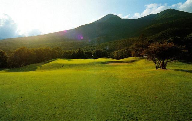 画像: 那須の山間に手造りされたが、各ホールに狭さは感じない