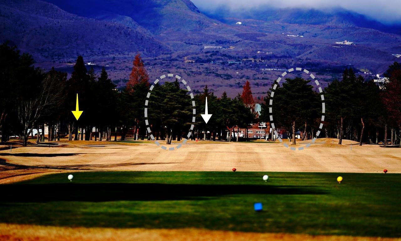 画像: 正面の那須岳から逆風。矢印は2つのピン位置。楕円で囲んだところに2本の木