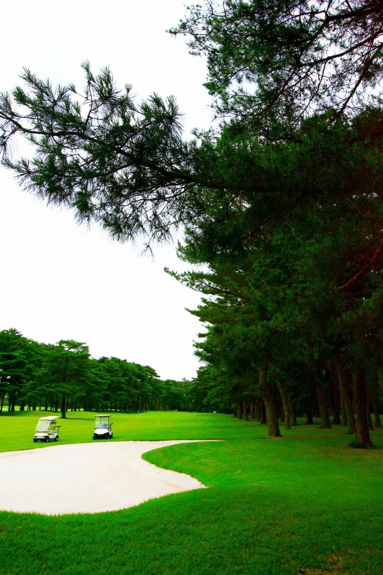 Images : 2番目の画像 - 大利根カントリークラブ - ゴルフへ行こうWEB by ゴルフダイジェスト