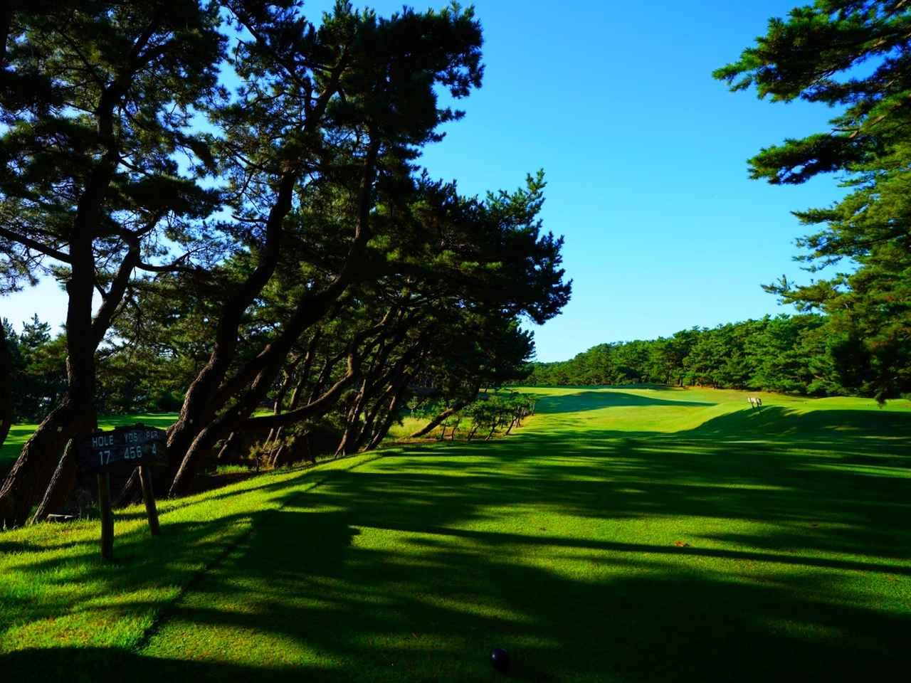 Images : 2番目の画像 - 大洗ゴルフ倶楽部 - ゴルフへ行こうWEB by ゴルフダイジェスト