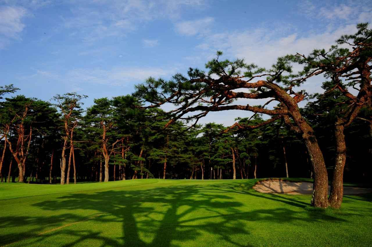 画像: 【会員権・研究】ネット予約できない有名ゴルフ場が優待価格で回れる。提携コースのあるメンバーシップコース(関東編) - ゴルフへ行こうWEB by ゴルフダイジェスト