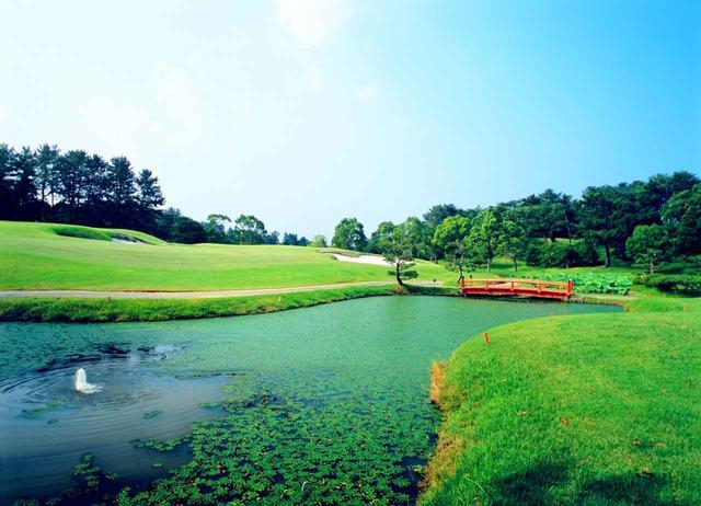 画像: 17番ホール(179ヤード、パー3)深いバンカーに囲まれた池越え。池の柔らかなライン、グリーンへの立体感が特徴