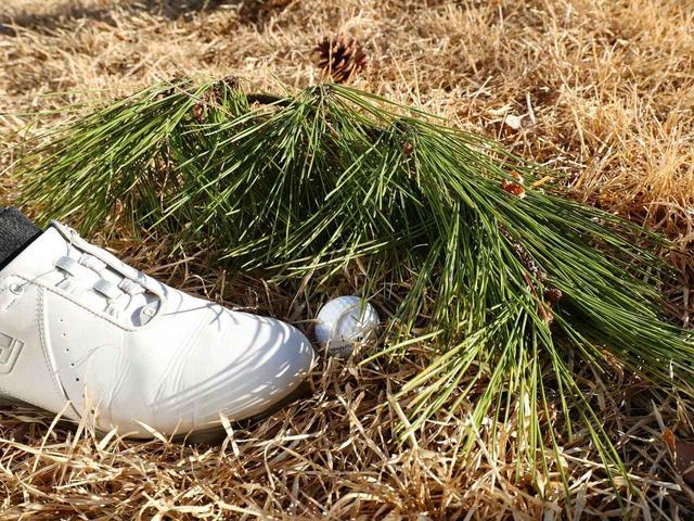 画像8: 【新ルール】自分のボールを蹴っちゃった、どうなる?