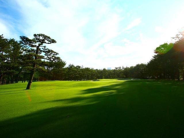 画像: 【九州・宮崎】「フェニックスCC」「トム・ワトソンGC」でゴルフ。旅行鞄の名ブランド「ペッレモルビダ杯」も開催  フェニックス2日間 2プレー - ゴルフへ行こうWEB by ゴルフダイジェスト