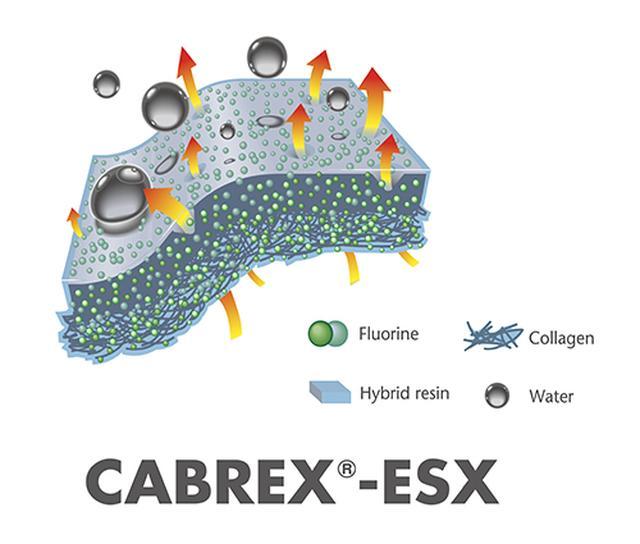 画像: 【羊革×CABREX®-ESX加工素材】 厳選した最高級羊革に「CABREX®-ESX」という機能を付加。独自に開発したハイブリットレジン(合成樹脂)をコラーゲン(硬タンパク質)繊維層に浸透、さらにフッ素加工を施した新技術だ