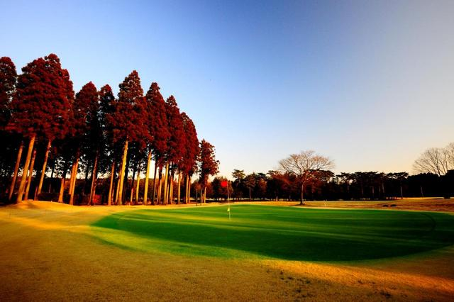 画像: 高麗グリーンの芝も手入れが行き届き、転がりがいい