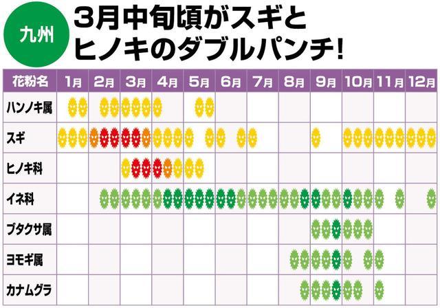 画像: 九州地方も、スギ、ヒノキともに猛威を振るう期間が比較的短いのが特徴。しかし、3 月中旬頃は両方の花粉のダブルパンチとなることが多い。対策を万全に