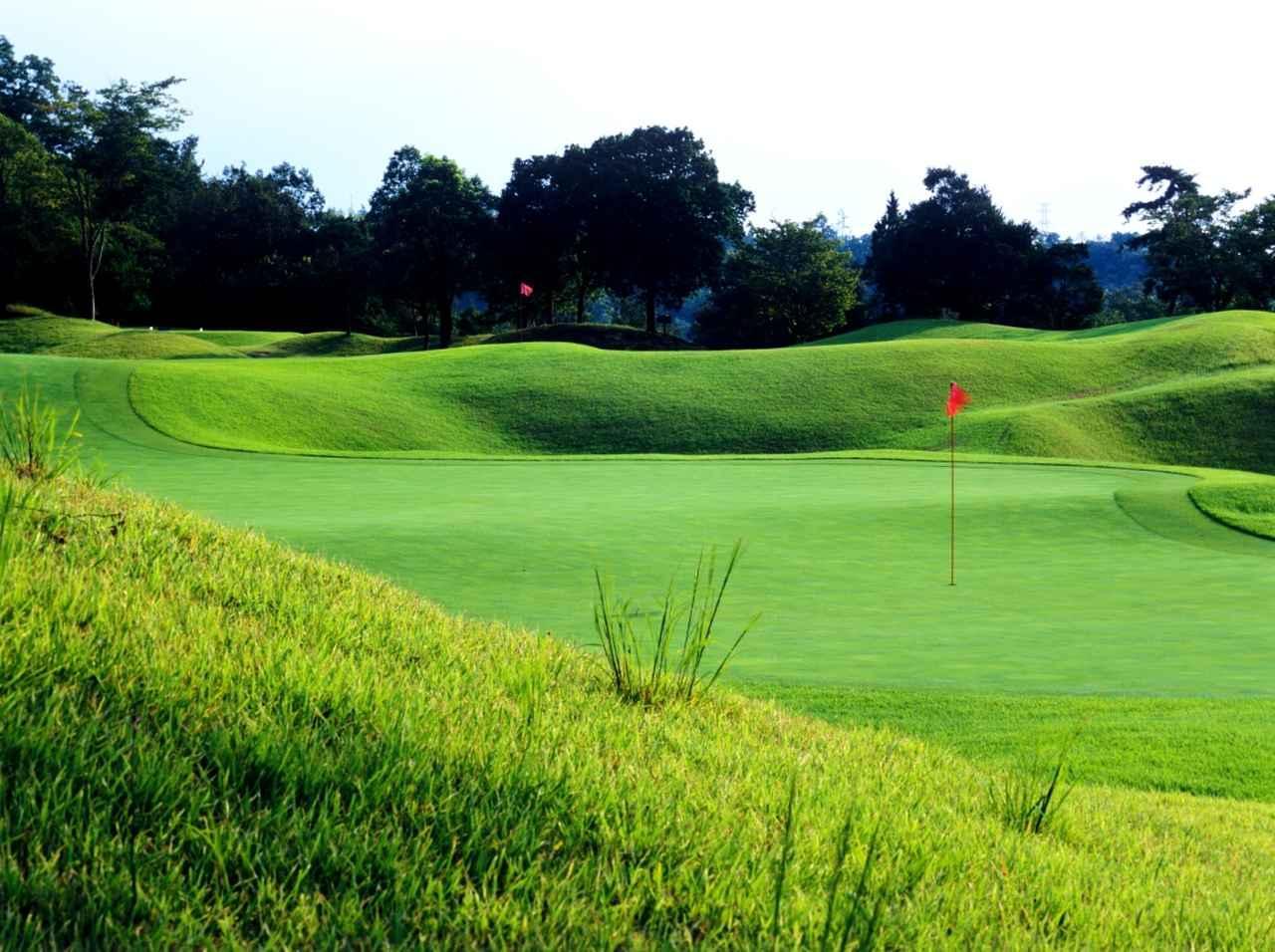 画像: ニクラスが設計した、愛知県「セントクリークゴルフクラブ」ウエストコース、2番・5番のダブルグリーン、複雑な起伏が見てもわかる
