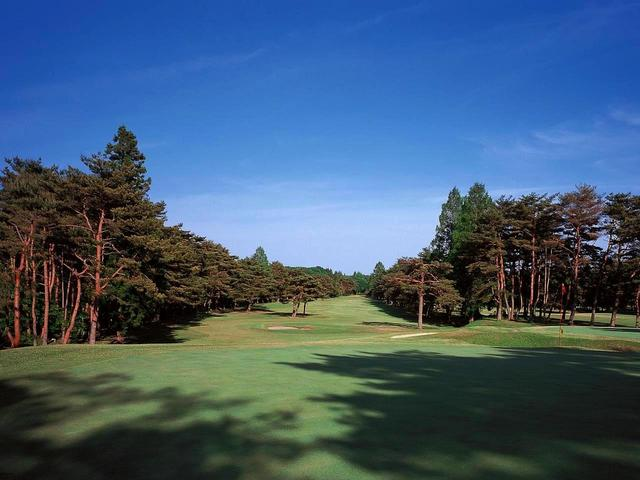 画像: 8番ホール/485㍎/パー5(鬼怒)赤松林の美しいパー5。ティから鬼怒川を眺めつつ右側のOBに注意して攻めたい